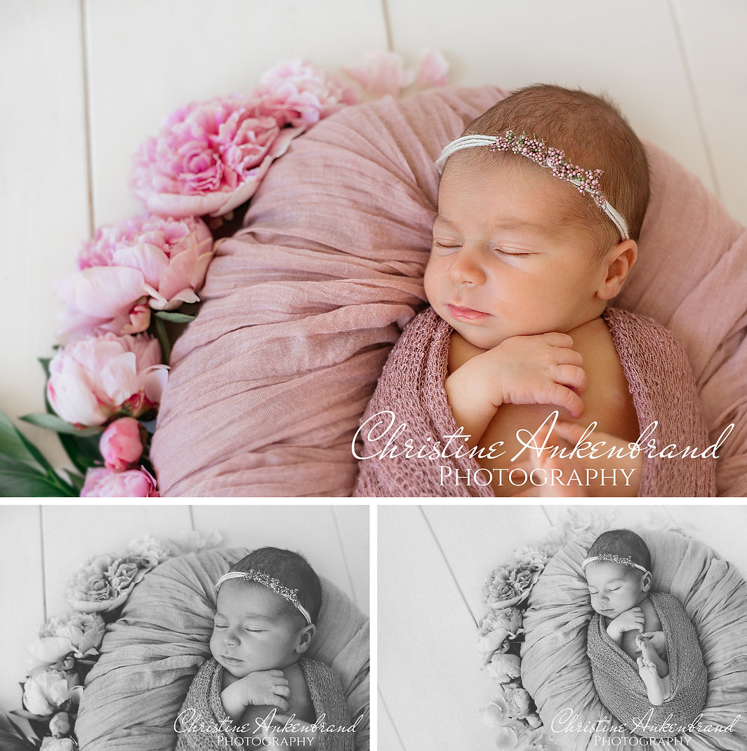 Neugeborenen fotografie Aschaffenburg