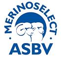 ASBV-1.png