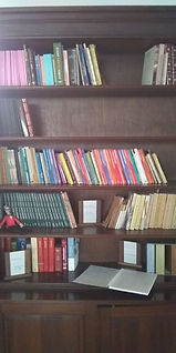 biblioteca.jpeg