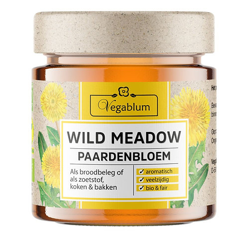 Wild Meadow Dandelion