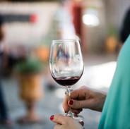 Wine Wellness Los Olivos 2018