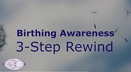 Three Step Rewind Process Support Package – 3 sessions over 3 weeks £180