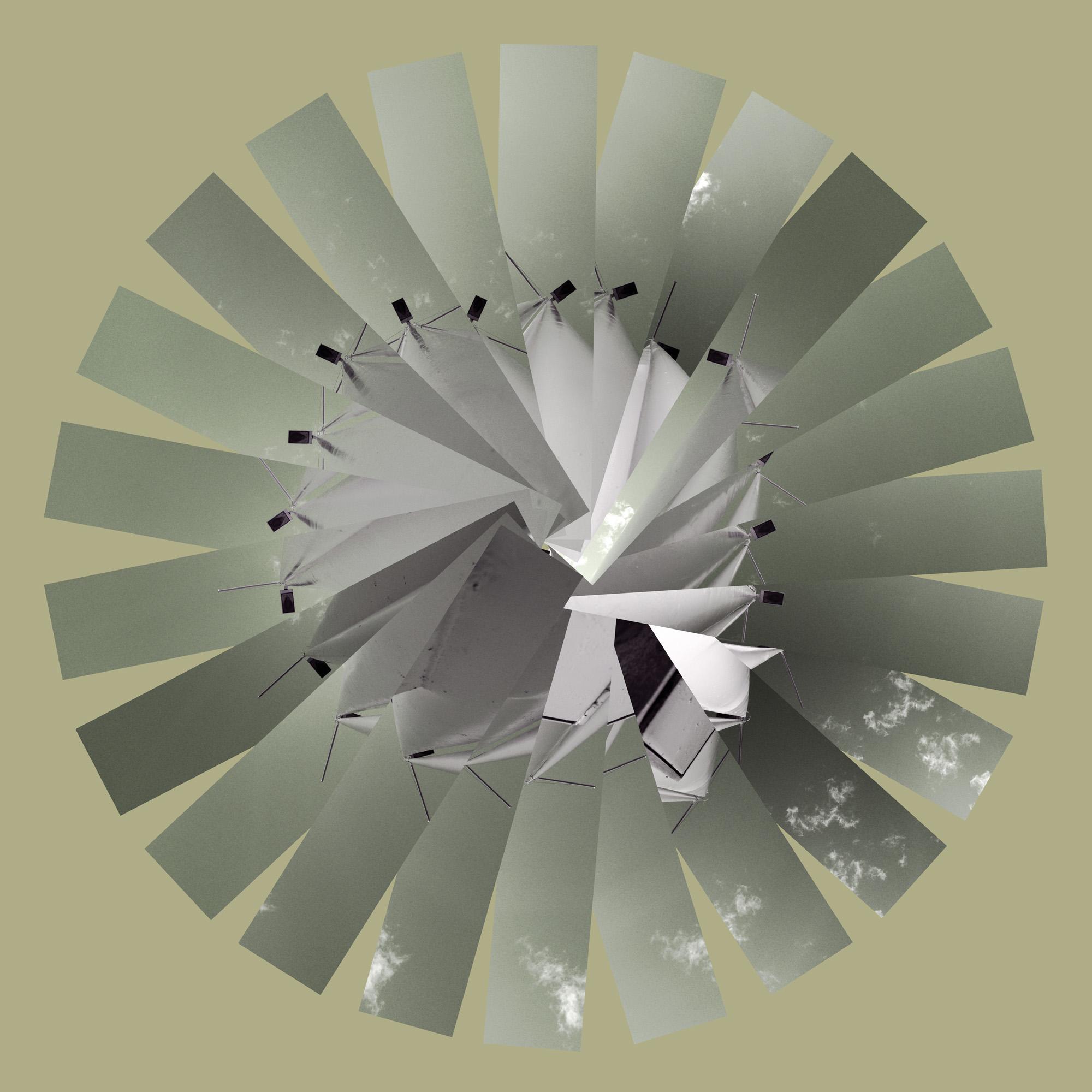 arbol7.jpg