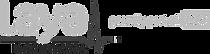 laya-logo_edited.png