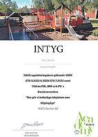 HAGS Intyg Uppdatering  2020.pdf.45[9355