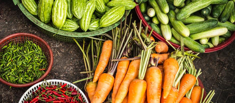 Hortalizas y plantas hortícolas para principiantes.