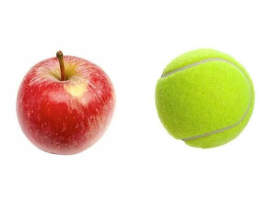 Apple and Tennis ball next to each other for calorie portion control
