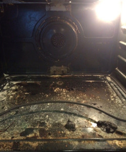 Oven Cleaning - Before