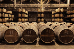 Cognac - Brandy Region
