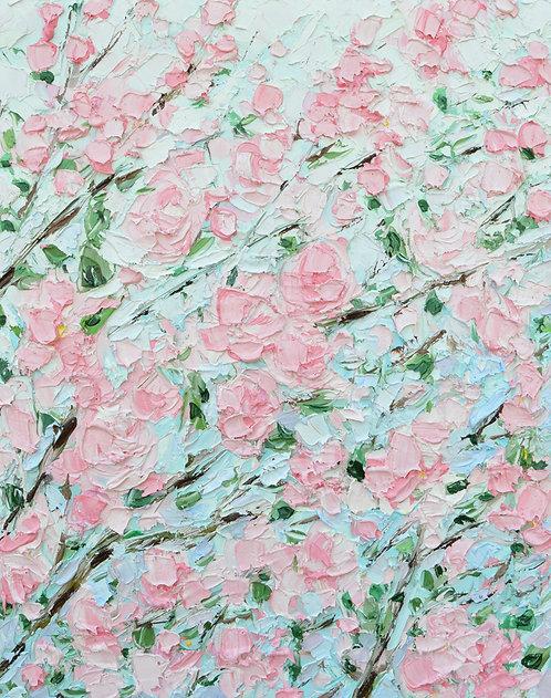 """Kwanzan Blooms, 20""""x16"""""""