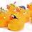 Thumbnail: Pêche aux canards