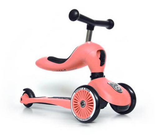 Scoot and ride - Trotinette évolutive pêche