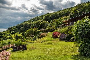 Montagna Verde