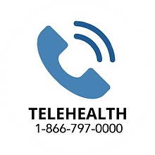 Telehealth Button2.png