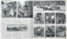 Forever Arnhem 2.jpg