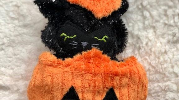 Wee little Jack o lantern black kitten