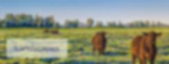3. Helen Komene Art Landscapes.png