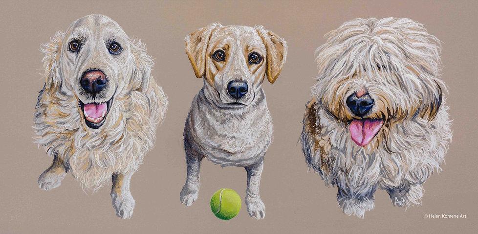 Helen Komene Art - Throw the ball please