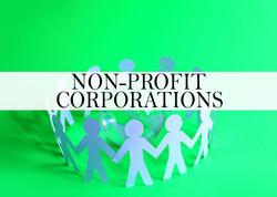 NON PROFIT CORPORATIONS