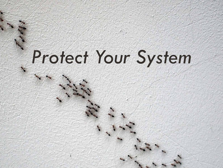 Protecting Your Air Conditioning Unit from Ants