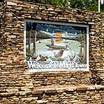 Mayflower-Logo.png