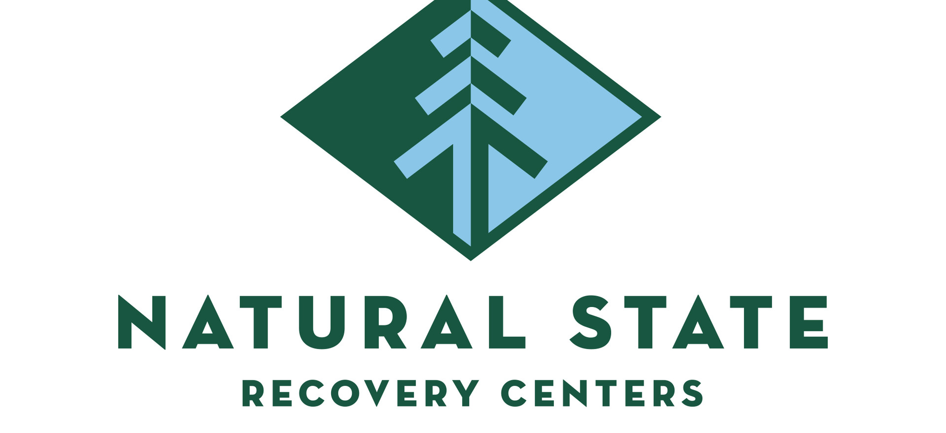 natural state recovery centers logo