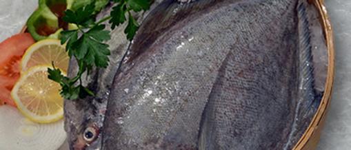 Halwa/Black Pomfret Fish(Net Weight 1kg)