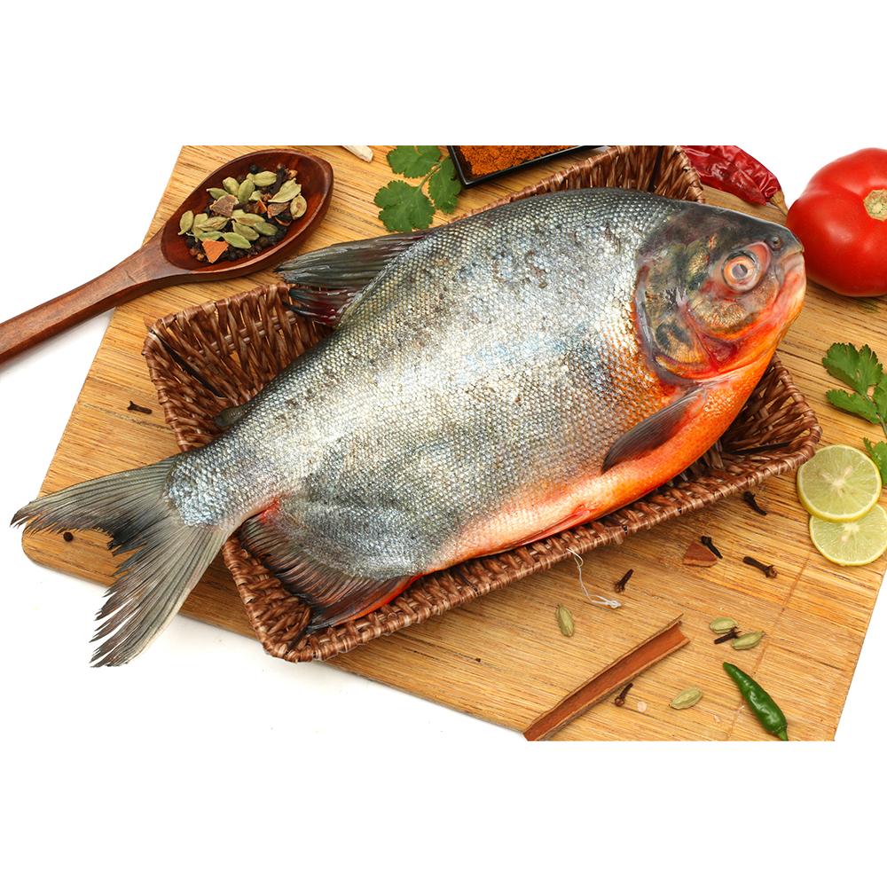 Roopchand Fish