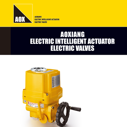 AOX Series Electric Actuator Rotary Motion (Quarter turn)