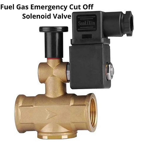 SCF Fuel Gas Emergency Cut Off Solenoid Valve (Normally Open)