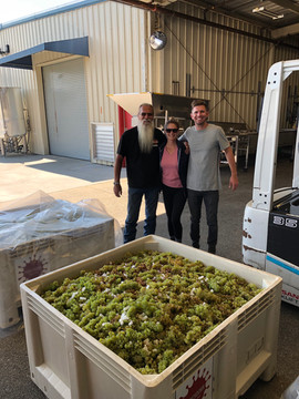 The Read Holland crew bringing in the goods after an early morning harvest