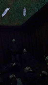 wolves-kooij-alchemy-ceiling.jpg