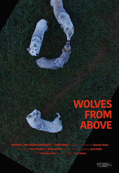 wolves-from-above_poster_kooij_sm_edited