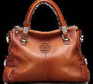 Brown Handbag.png