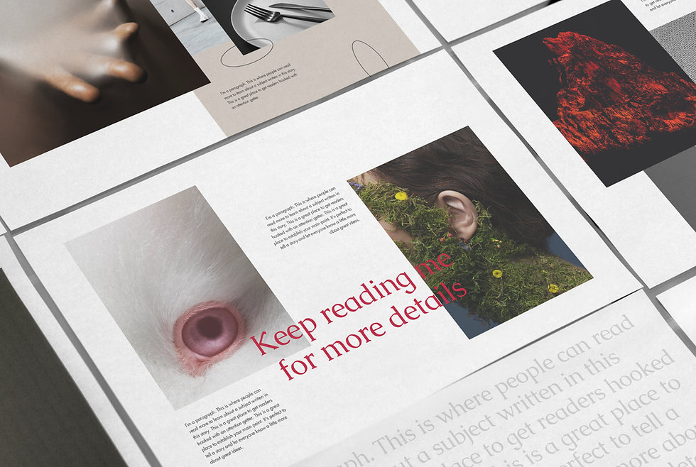 Spreads from the magazine