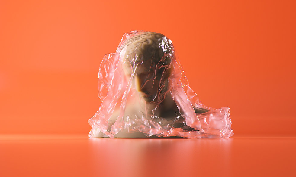 Portrait sculpture covered with a transparent plastic sheet