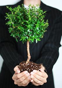 Business Growth_edited.jpg