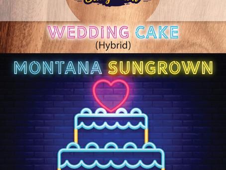 Wedding Cake Shatter