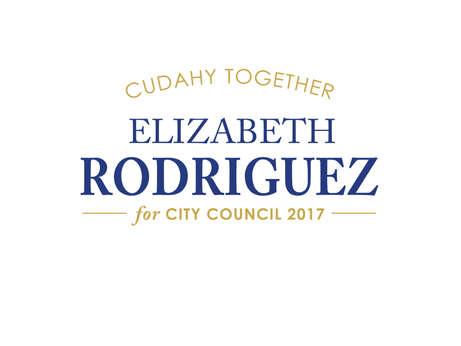 City Council Elections