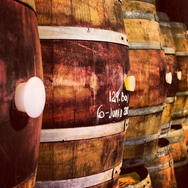 Barrels of vinisterra where french oak is king