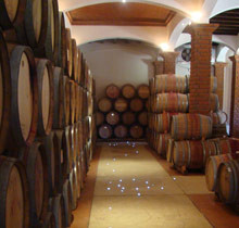 Vinisterra barrel room.jpg