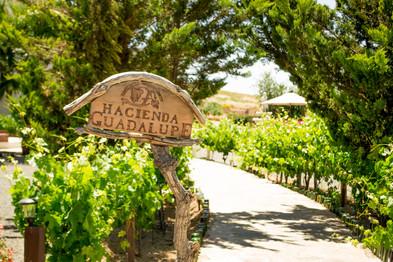 Hacienda Gpe.jpg