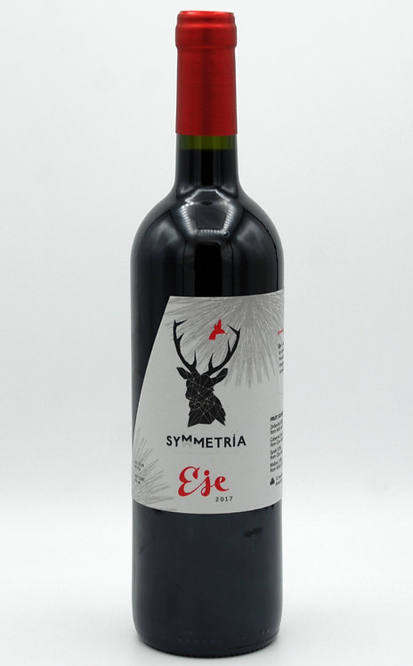 2017 Eje  -  Symmetria