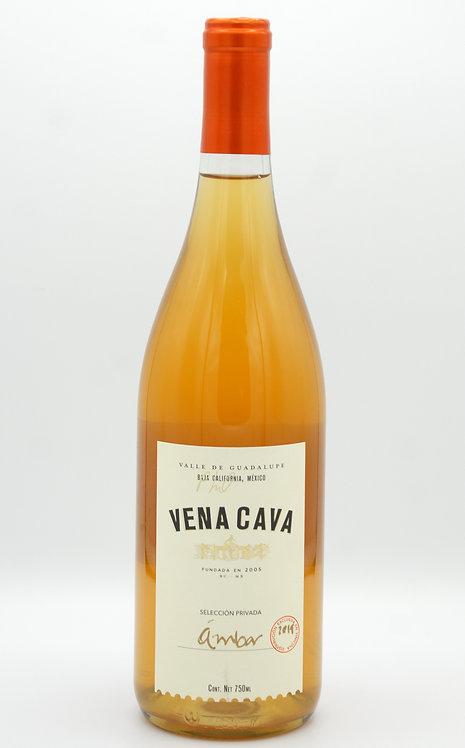 2019 Ambar CH  -Vena Cava
