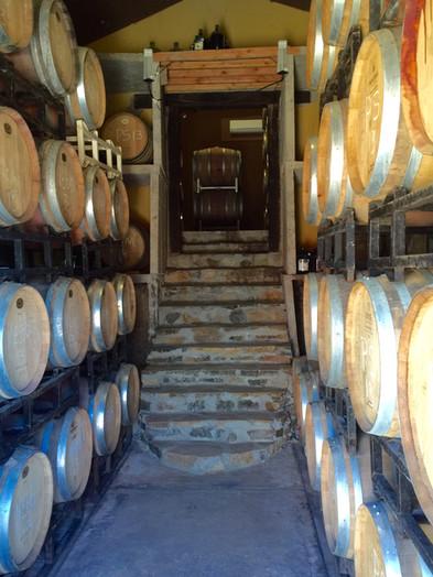 Cava Maciel barrels 2.jpg