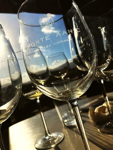 monte xanic winery interior.JPG