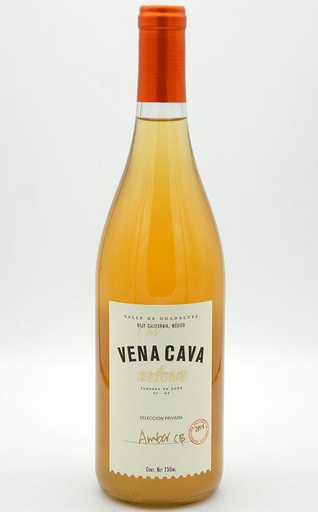 2019 Ambar CB  -Vena Cava
