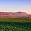 Thumbnail: 2017 Calixa Cabernet Syrah (375ml) -  Monte Xanic