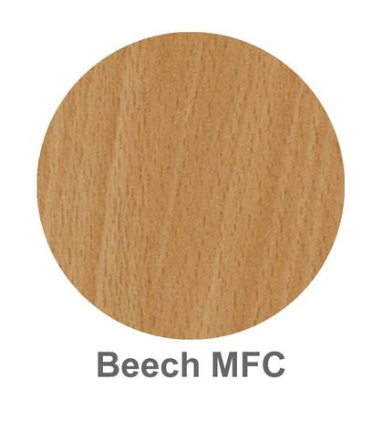Beech MFC.jpg