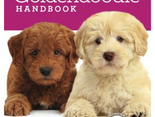 New Goldendoodle Handbook